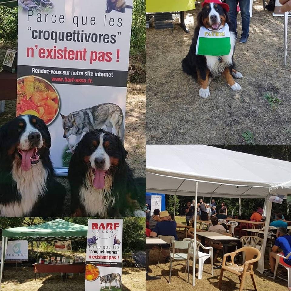 Montboubou 2019 Barf Asso Association Loi 1901 Visant A Promouvoir L Alimentation Naturelle Des Carnivores Domestiques Chiens Chats Et Furets Chiens Chats Et Furets